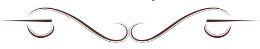 Victorian calligraphic line 3