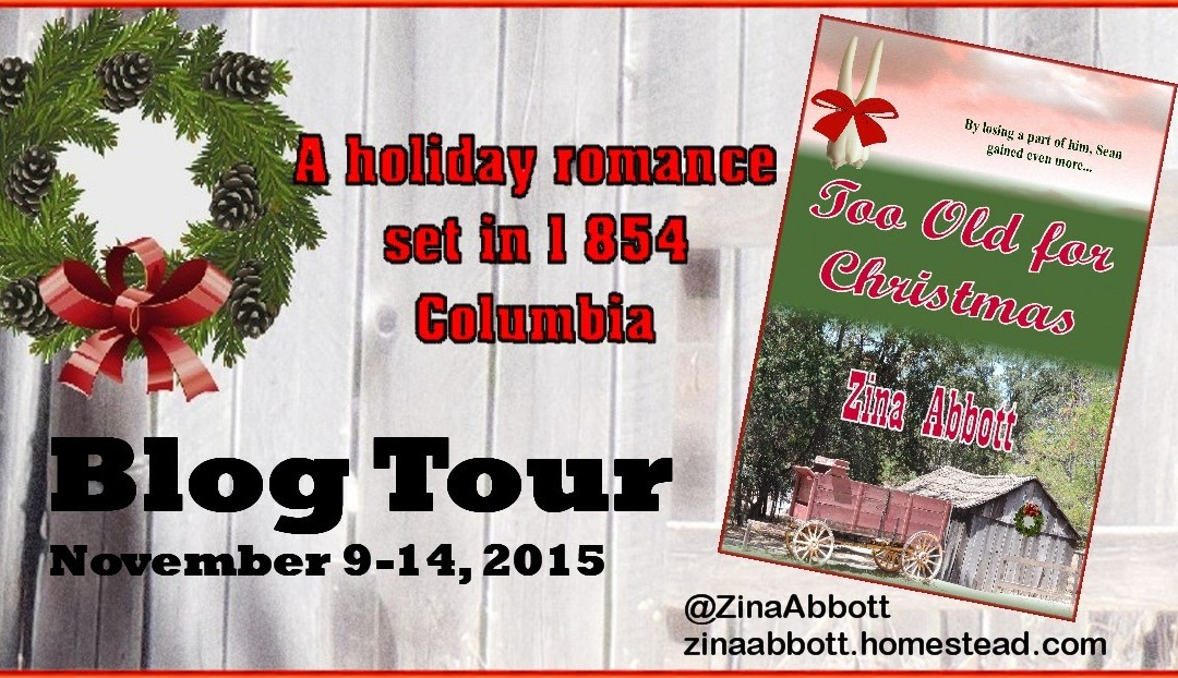 Blog Tour AND Book Review: Too Old For Christmas by Zina Abbott