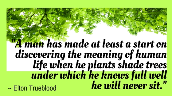 _A man has made at least a start on discovering the meaning of human life when he plants shade