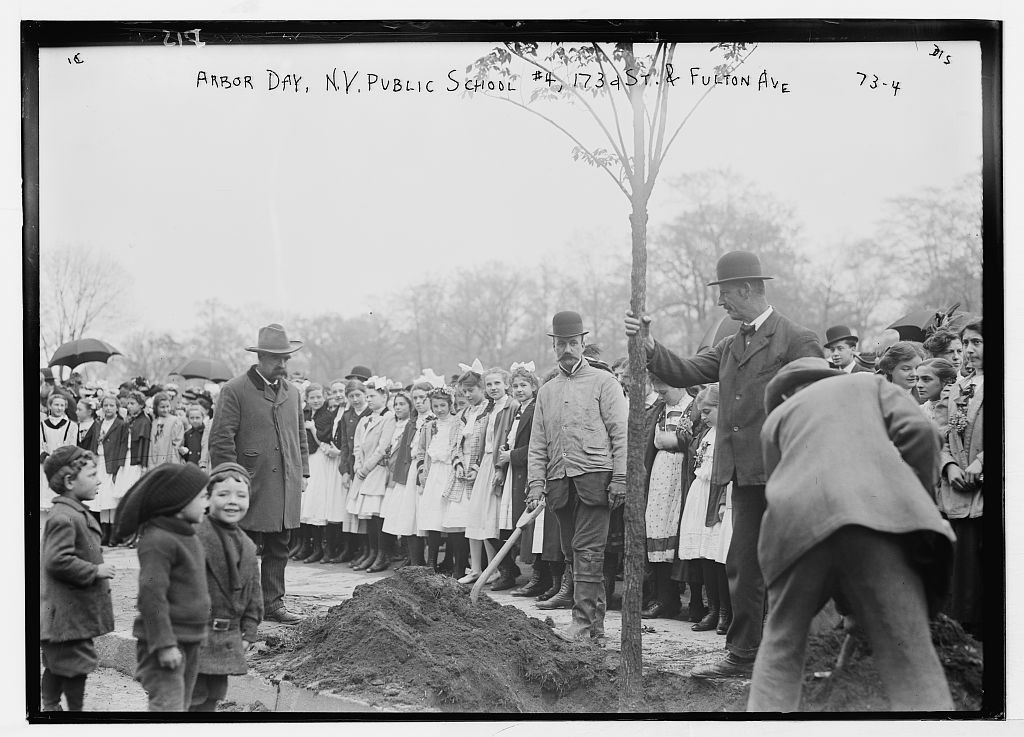 Planting of trees, Arbor Day, N.Y. Public School #4, 173rd St. & Fulton Ave., New York, image: http://www.loc.gov/pictures/item/ggb2004000388/