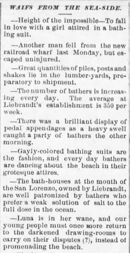 "Kristin Holt | Victorians at the Seashore. From Santa Cruz Weekly Sentinel, June 26, 1875, a list of newsy briefs titled ""Waifs from the Sea-side."" Includes quips and a slice-of-life view of Victorians at the Seashore."