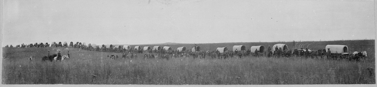 Indian teams hauling 60 miles to market the 1100 bushels of wheat raised by the school at SEger Colony, Oklahoma Territory, circa 1900. Image shows a long (covered) wagon train, with men mounted on horses, people walking. [Image: Public Domain, courtesy of Wikipedia]