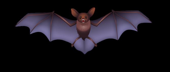 bat_clipped_rev_2