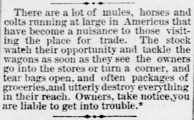 "Kristin Holt | ""Nineteenth Century Problems"". The Americus Weekly Herald of Americus, Kansas, December 22, 1881."