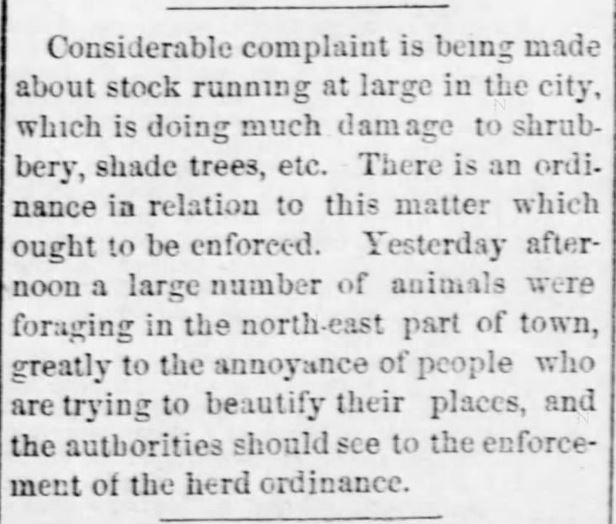 "Kristin Holt | ""Nineteenth Century Problems"". Emporia Daily News of Emporia, Kansas, July 17, 1882."