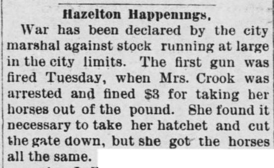 "Kristin Holt | ""Nineteenth Century Problems"". Barber County Index of Medicine Lodge, Kansas. June 4, 1890."