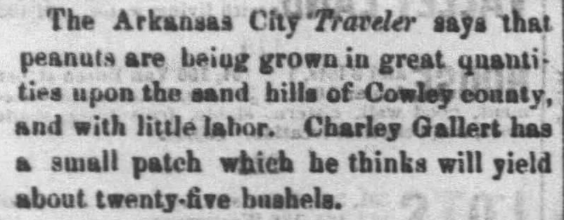 Kristin Holt | Peanut Butter in Victorian America. Snip from The Daily Commonwealth of Topeka, Kansas, August 23, 1871. Peanuts are grown upon the sand hills of Cowley county, and with little labor. (Peanuts are grown in Kansas.)