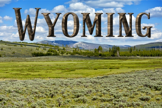 Kristin Holt | The Great State of Wyoming. Related to Series Description: Professional Women of Wyoming Territory Trilogy.