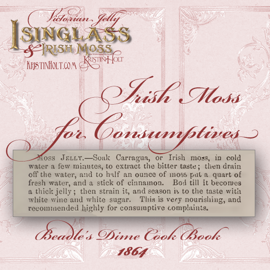 Kristin Holt | Victorian Jelly: Isinglass and Irish Moss. Irish Moss Jelly recipe for Consumptives. From Beadle's Dime Cook Book, 1864.