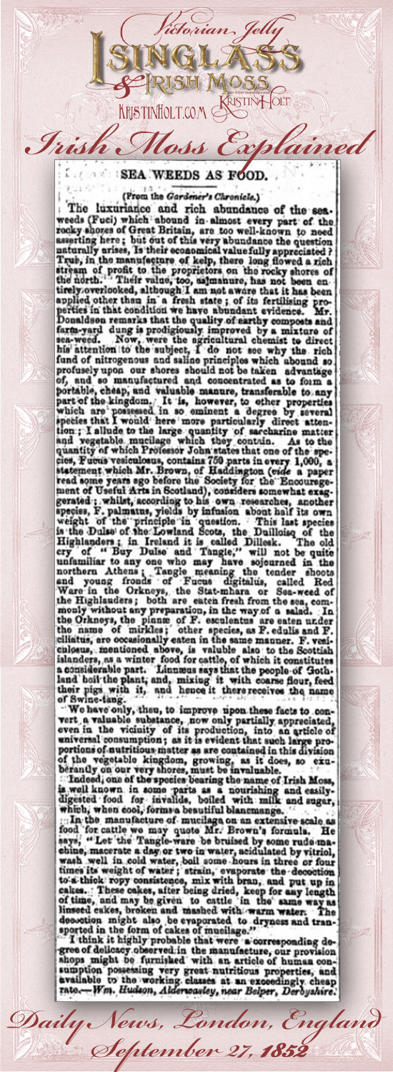 Kristin Holt | Victorian Jelly: Isinglass and Irish Moss. Sea Weeds as Food, explaining Irish Moss in culinary uses. From Daily News of London, England, September 27, 1852.
