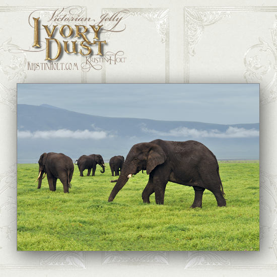 Kristin Holt | Victorian Jelly: Ivory Dust. Photograph of African elephant herd on green field.
